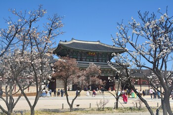 Южная Корея установила рекорд турпотока