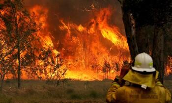 В Австралии продолжают бушевать сильнейшие лесные пожары
