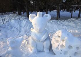 Фестиваль снежных скульптур 2020. Новосибирск
