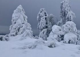 Настоящая зима. Пермский край