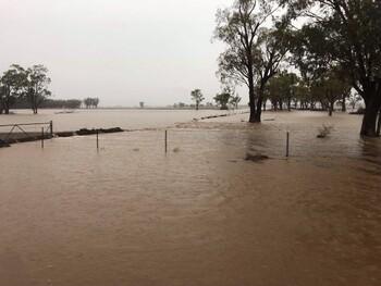 В Австралии начались дожди