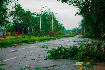 Последствия тайфуна в ноябре
