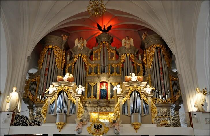 Действующий орган в кафедральном соборе