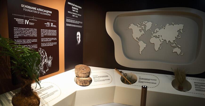 Музей Новой хронологии<br/> в Ярославле
