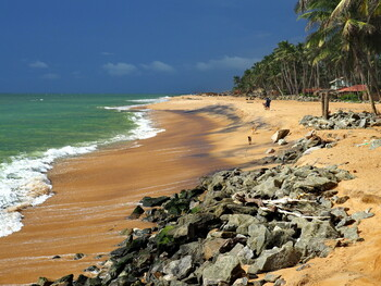 Турпоток из РФ на Шри-Ланку установил исторический рекорд