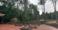 Парк босоногохождения Барфусспарк
