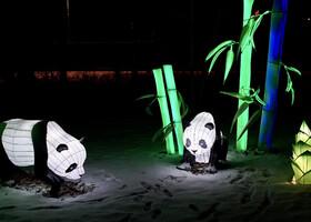 Волшебные китайские фонарики в«Сокольниках»