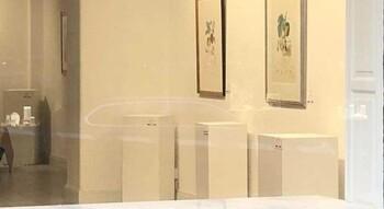 Из галереи в Стокгольме украли 12 работ Сальвадора Дали