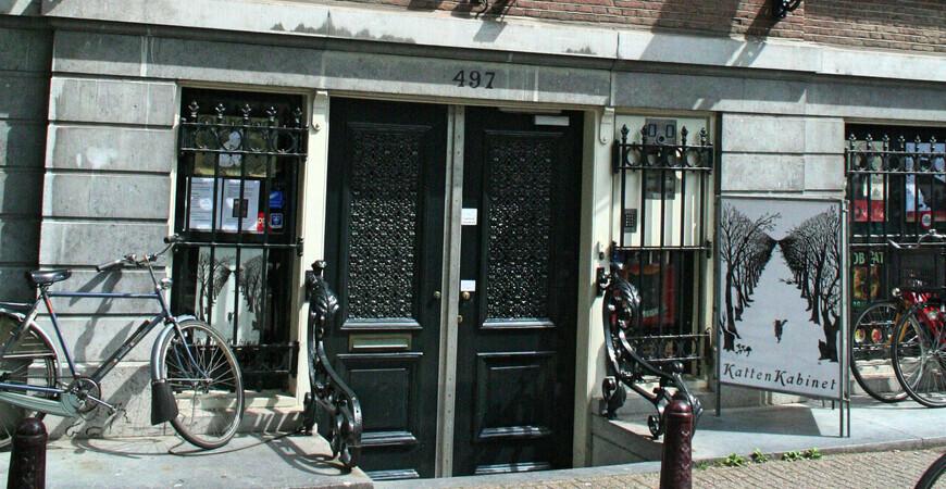 Кошачий кабинет<br/> в Амстердаме
