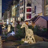 """На одной из улиц позади киосков сделан интересный """"минилес"""" со светящимися животными"""