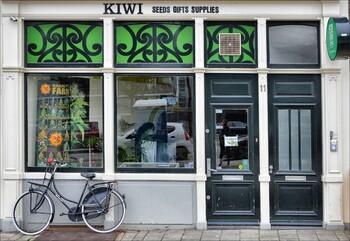 Турпоток в Амстердам может сократиться из-за запрета каннабиса