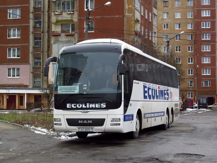 Автобус Минск — Львов