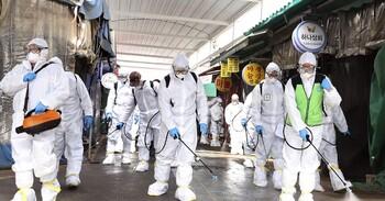 Роспотребнадзор рекомендует туристам не ездить в Италию, Иран и Корею из-за коронавируса