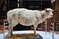 Чучело овечки Долли - первого клона в мире