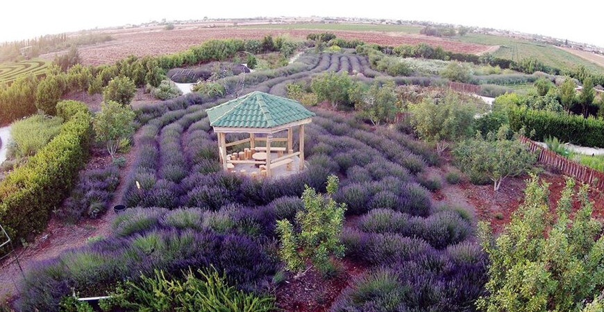 Ботанический сад CyHerbia