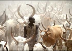 Путешествие в Южный Судан ч.1 — первое знакомство