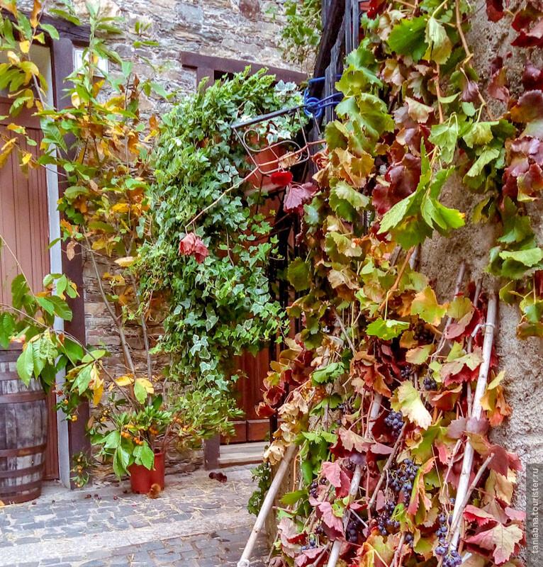 Другая Сардиния. Осень в горах Барбаджи.