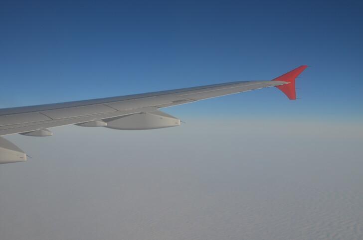 Сколько лететь до Гоа