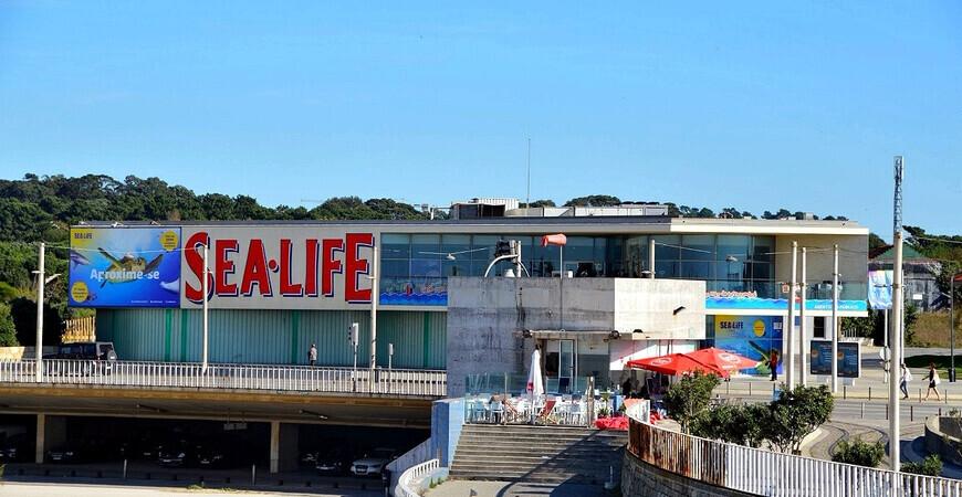 Океанариум «Sea Life» в Порту