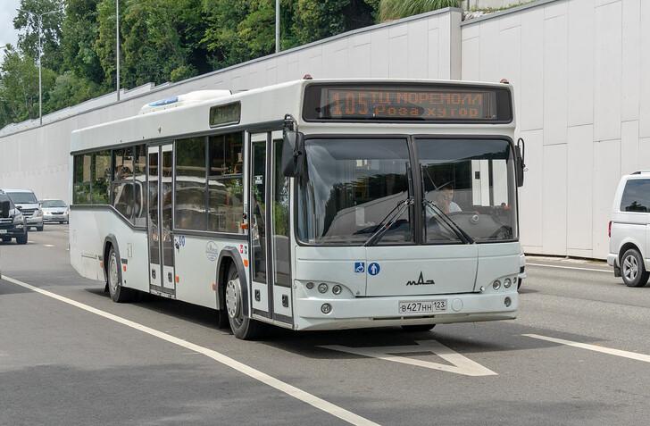 Автобус Адлер — Красная Поляна, Роза Хутор