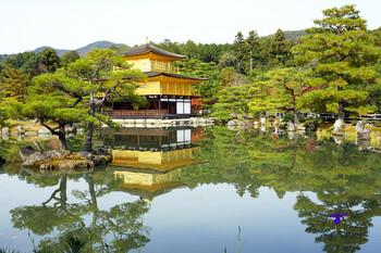 Япония вводит режим ЧС в семи префектурах
