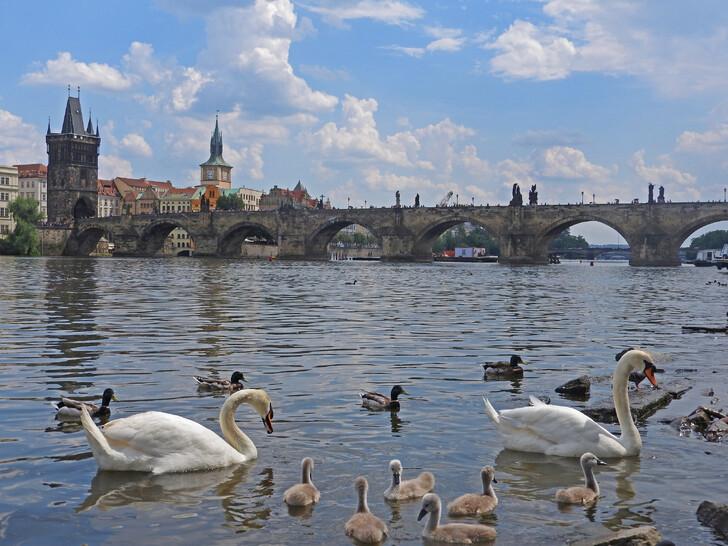 Сколько лететь до Праги