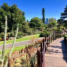 Королевский ботанический сад Мельбурна