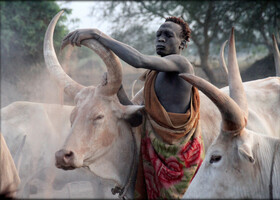 Путешествие в Южный Судан ч.2 — рогатое племя