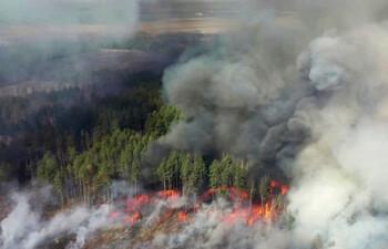 Огонь в зоне ЧАЭС добрался до Припяти