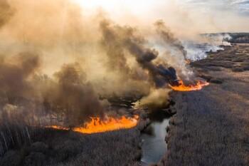 Пожар уничтожил треть туристических достопримечательностей в Чернобыле