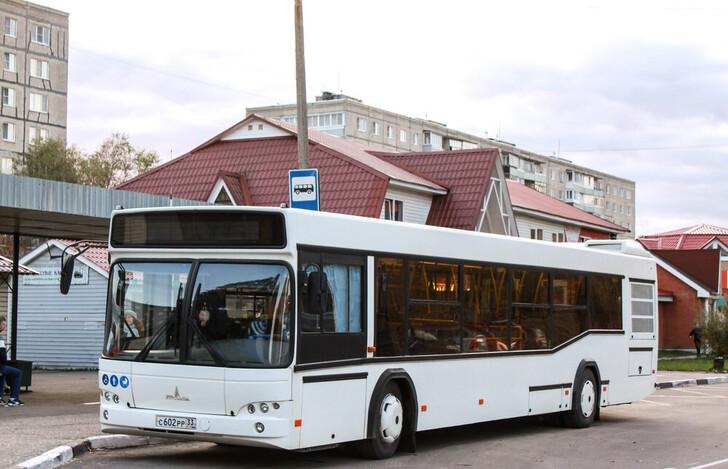 Автобус Владимир — Радужный