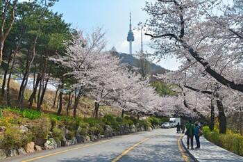 Южная Корея готовится к выходу из карантина