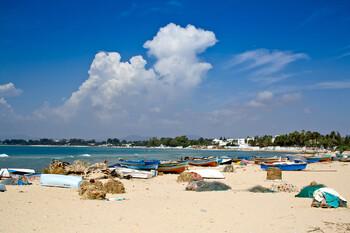 Тунис хотел бы начать прием иностранных туристов уже в середине мая