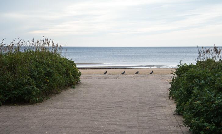 Пляж в Сестрорецке