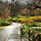 Национальный парк «Данденонг»