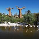 Зоопарк «Zoom Torino»