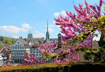 Швейцария не будет требовать от туристов тест на коронавирус