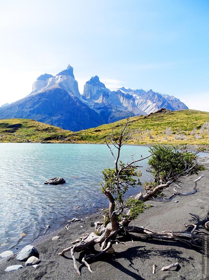 Южная Америка, как первая любовь — запомнится навсегда! Часть IV — Патагония