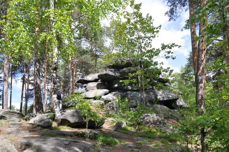 Лесопарк «Каменные палатки»