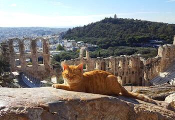 В Греции возобновляют работу археологические объекты