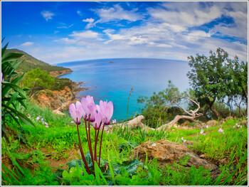 На Кипре будут ждать туристов из благополучных по коронавирусу стран