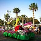 Праздник цветов «Анфестирия» на Кипре