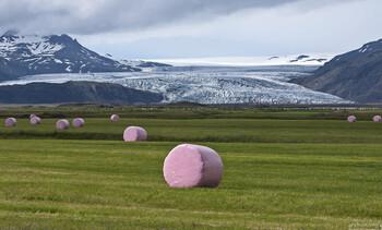 Исландия снимет большинство ограничений с 25 мая