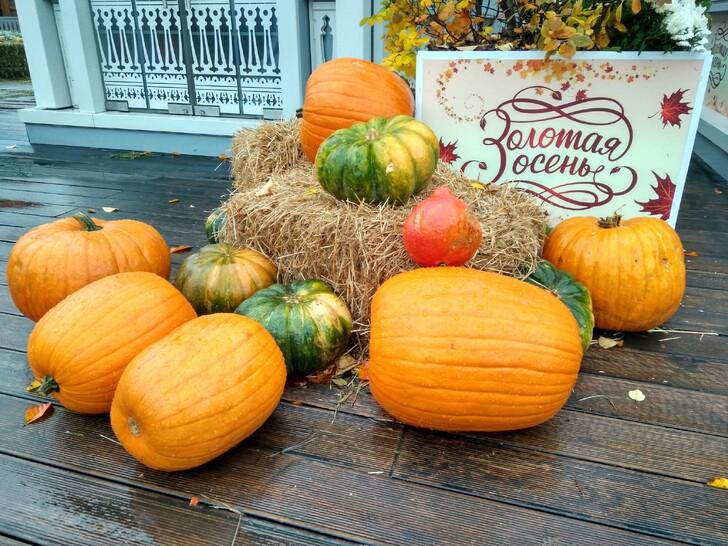 Фестиваль «Золотая Осень» в Москве