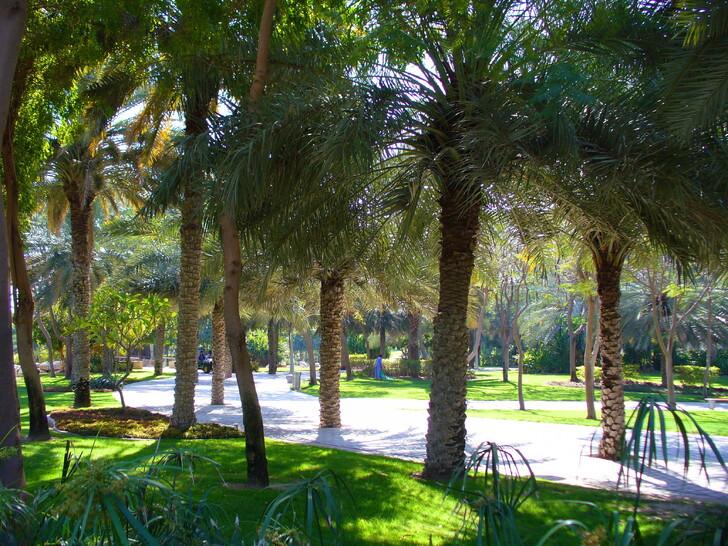 парк Забиль