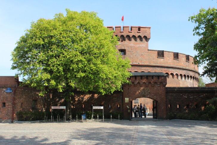 Музей янтаря в башне Дона