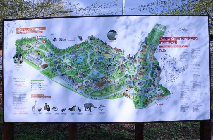 Схема зоопарка