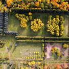 Ботанический сад ННГУ в Нижнем Новгороде
