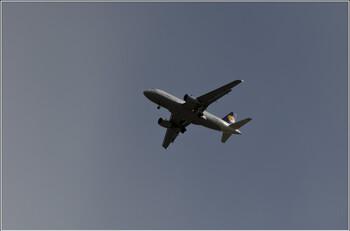 Lufthansa обещает бесплатно вернуть всех туристов в случае новой волны пандемии