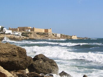 В Тунисе у туристов потребуют результат теста на коронавирус